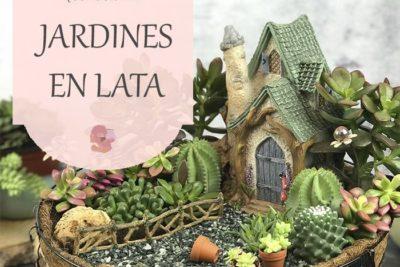 Crea un jardín en miniatura de la mano de María y sus jardines en lata, ¡sin palabras!